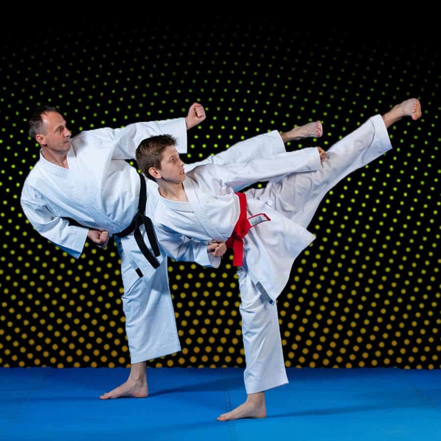 Martial Arts Lessons for Families in Maplewood NJ - Dad and Son High Kick