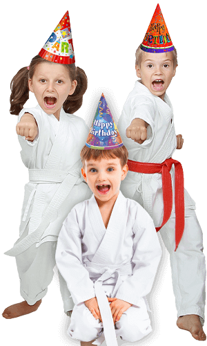 Martial Arts Birthday Party for Kids in Maplewood NJ - Birthday Punches Page Banner